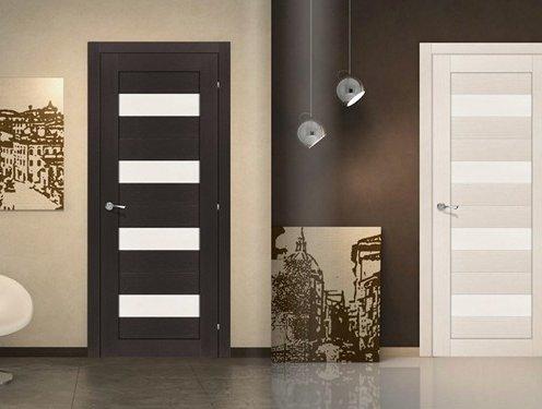 двери шпон или экошпон